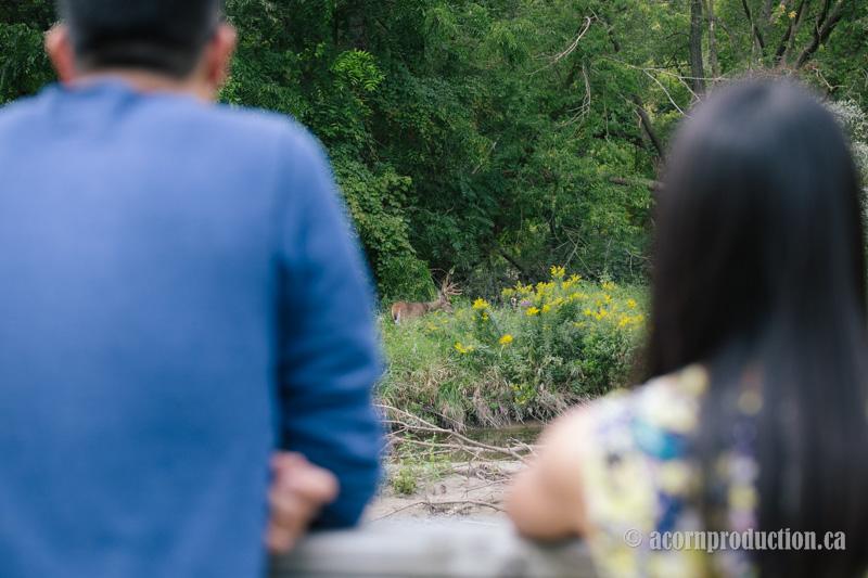 20-engagement-couple-spot-deer