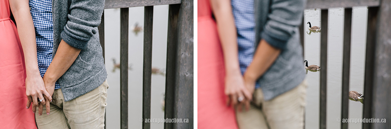 02-engagement-session-too-good-pond-markham