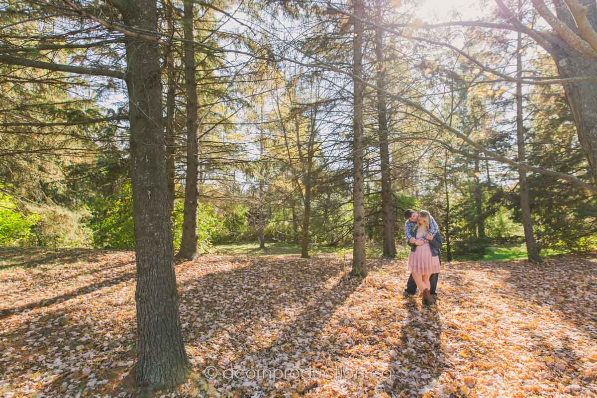 toronto-engagement-photo-forest-morning-light