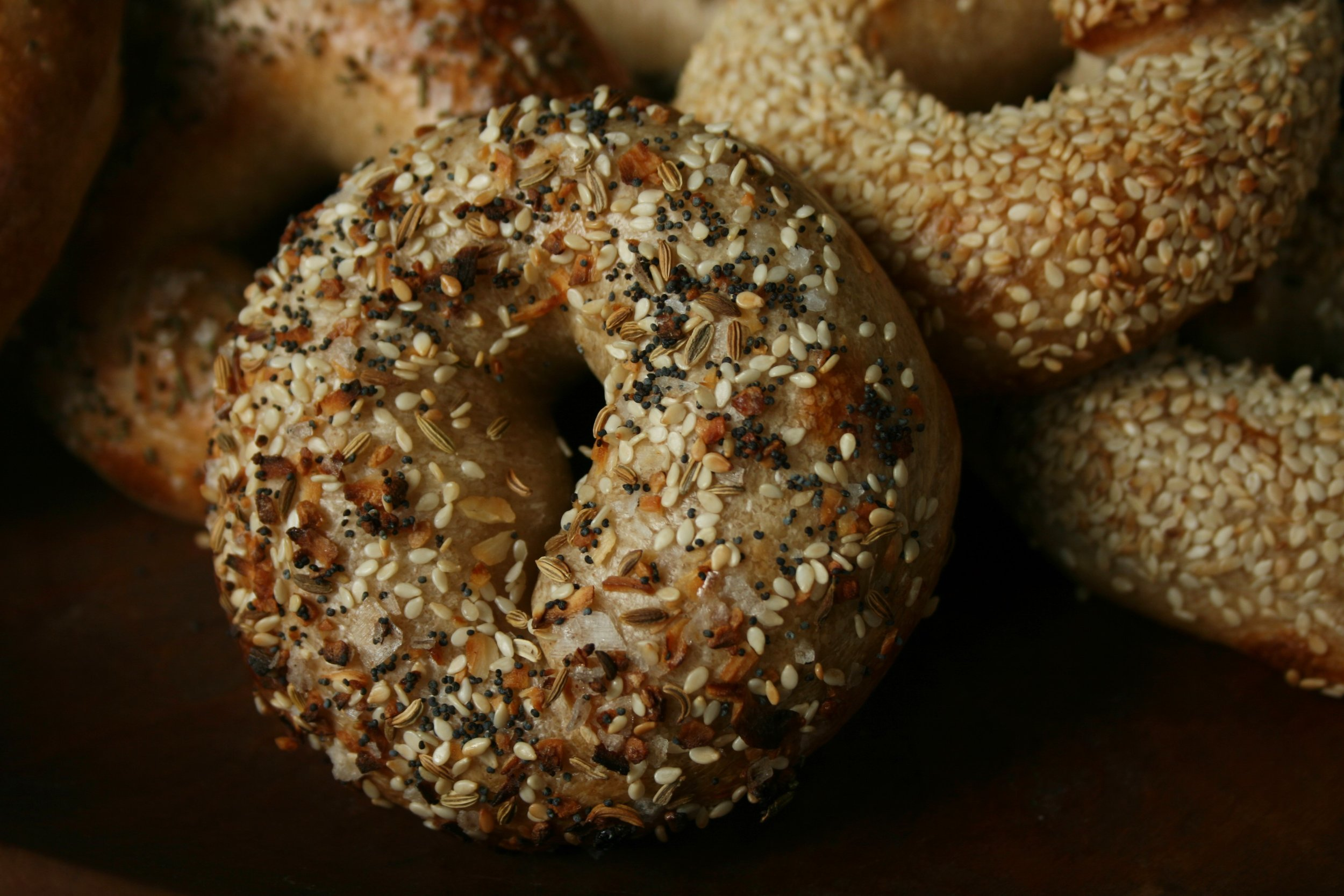 Bagel Everything.jpg