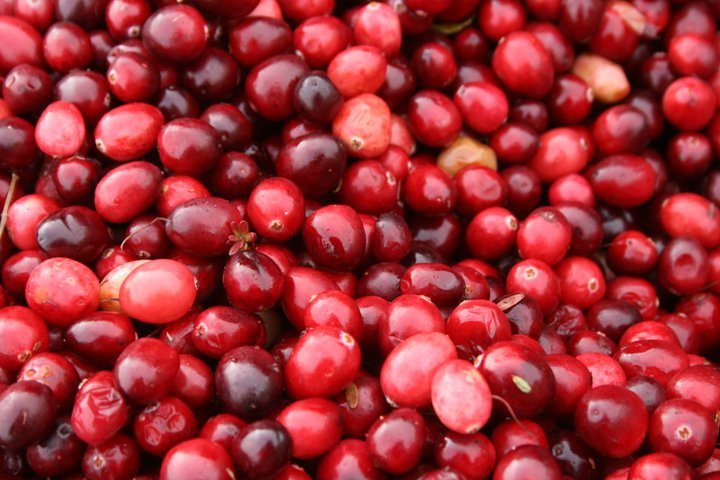 Cranberry 1.jpg