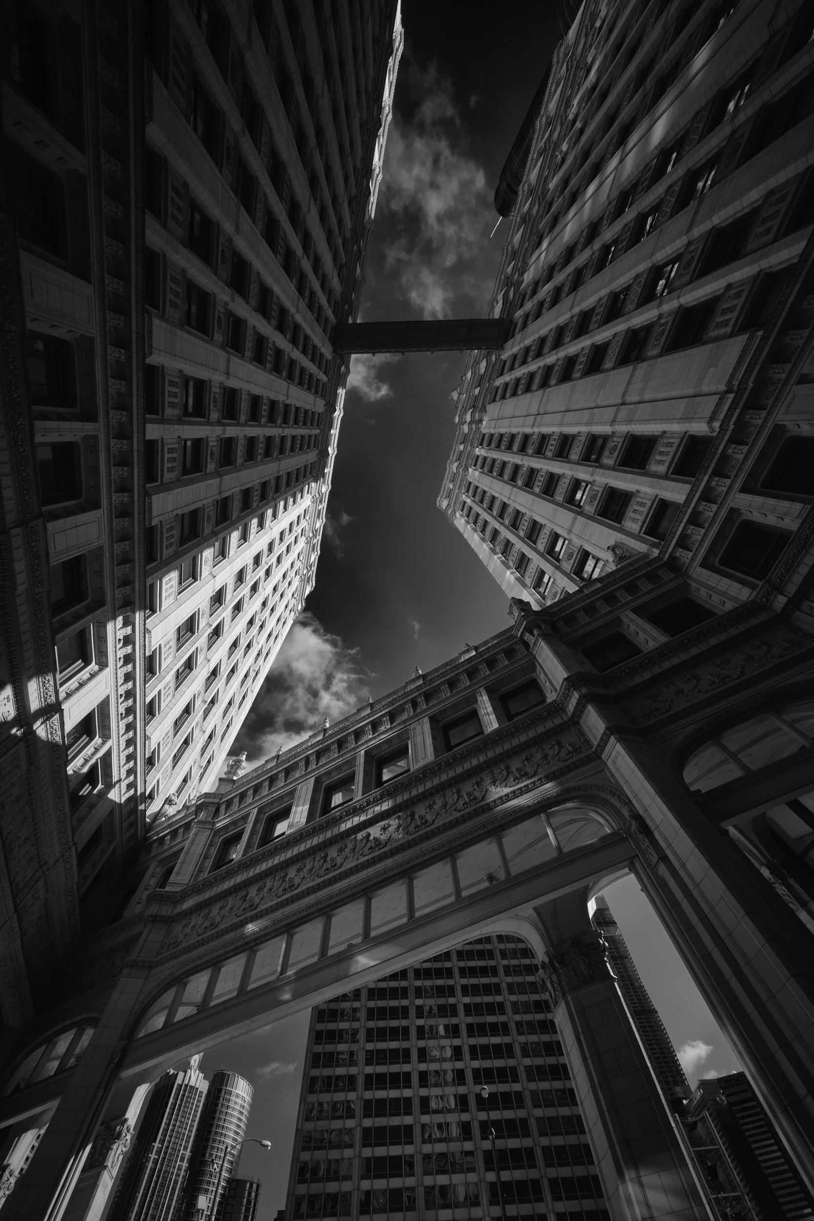 Chicago-0059.jpg