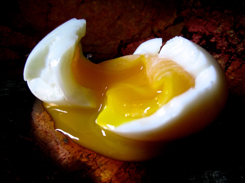 Endless Egg, 2014