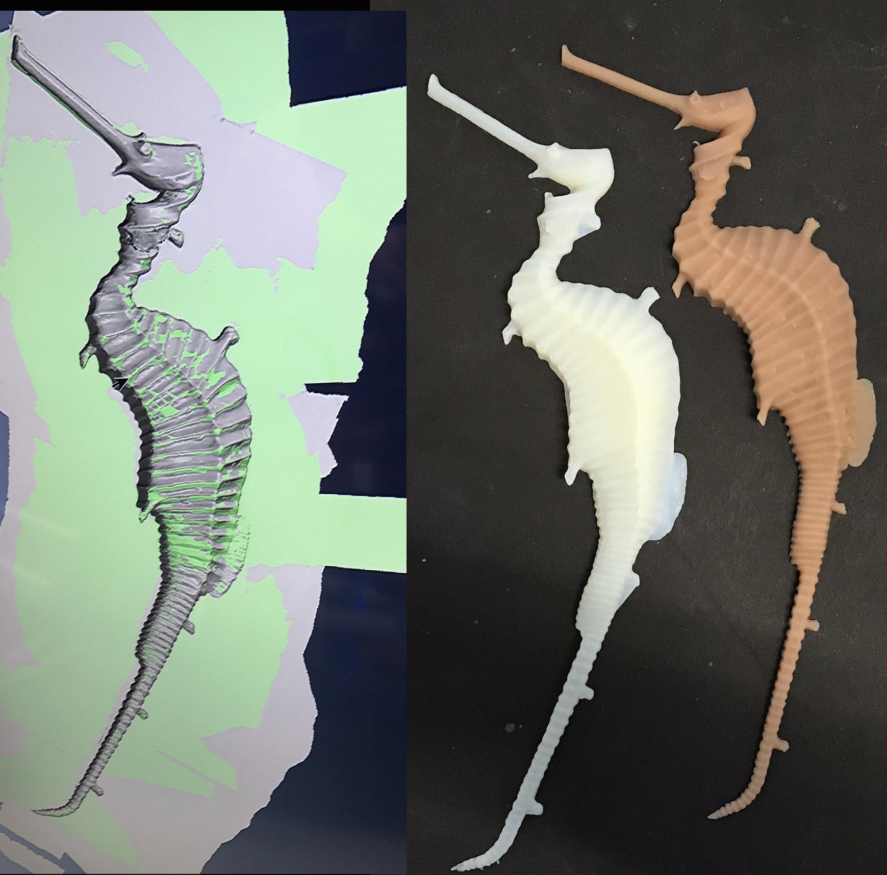 Scuplture:  Scan to 3D Print