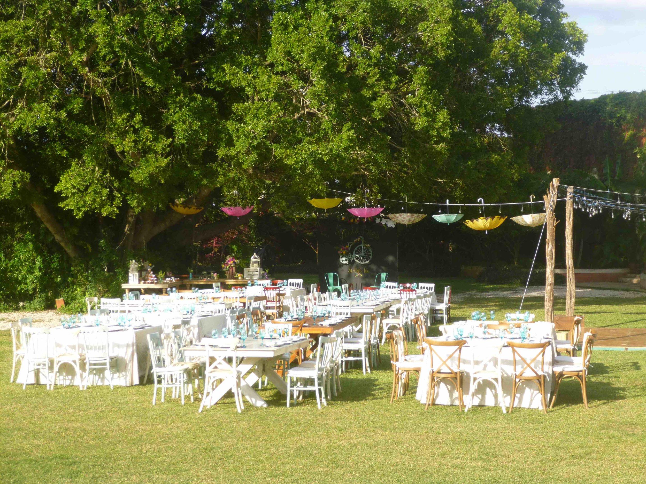 Wedding front garden tree umbrella.jpg