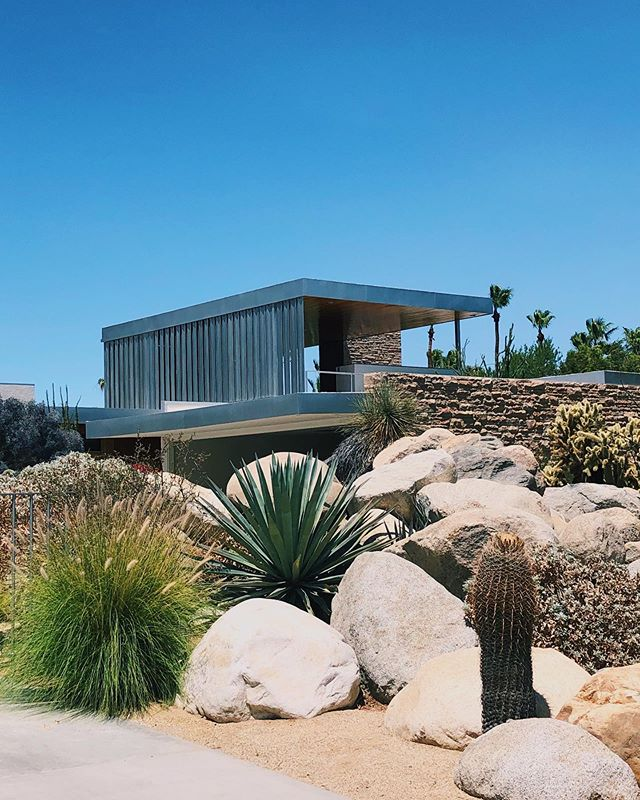IDK how I didn't already know this, but the very popular #kaufmanndeserthouse in Palm Springs is the setting for one of my fave Slim Aaron's photo. 🍹🏊‍♀️⛱💦 Of course I could only stare at the back of the house from the other side of the security fence, but still cool to know what was on the other side. 😬🔭 #cliktrips #slimaarons #palmspringsca #palmspringslife #somewhereiwouldliketolive #designmilktravels  #suitcasetravels #culturetrip #electrifytravels #itsbeautifulhere #mytinyatlashello #travelwithfathom #somewhereiwouldliketogo #vacaymode #vacayvibes #vacationgoals #vacationvibes