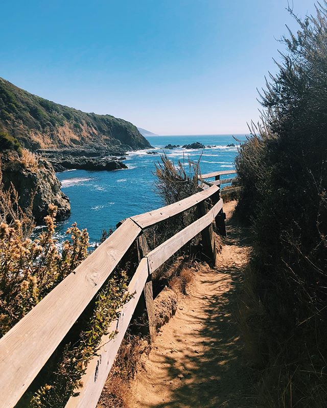 Only had a few days in Big Sur, but managed to fit in a few hikes and beach walks. Basically, you spend your days outside in nature, have drinks and dinner at sunset and go to bed by 10pm when it's pitch black 🌻🌲🌙🌾 First couple photos are from my favorite short hike to Partington Cove. It's only about a mile, but you go over a tiny bridge and through a tunnel to a rocky cove. 🔶 Third video is from the beach at Andrew Molera State Park. There are a bunch of awesome trails in the park, but the Creamery Meadows trail takes you to the beach where ppl build forts out of the driftwood. 🔶 Pfeiffer Beach is one of the main swimming beaches in Big Sur. It's down a long windy road, but it's worth the trek to the wide sandy beach with big rock cliffs on all sides. 🔶 And finally we conquered Buzzards Roost. It's a 4 mile trail through the forest and up a bunch of switchbacks that eventually opens up to coastal views of the Pacific. All of them are awesome! 🔶 #cliktrips #bigsur #bigsurhiking #bigsurcalifornia #partingtoncove #andrewmolerastatepark #creamerymeadowtrail #pfeifferbeach #buzzardsroost #travelaway #goopgo #gglocalgems #lovefromfp #abmtravelbug #wheretofindme #speechlessplaces