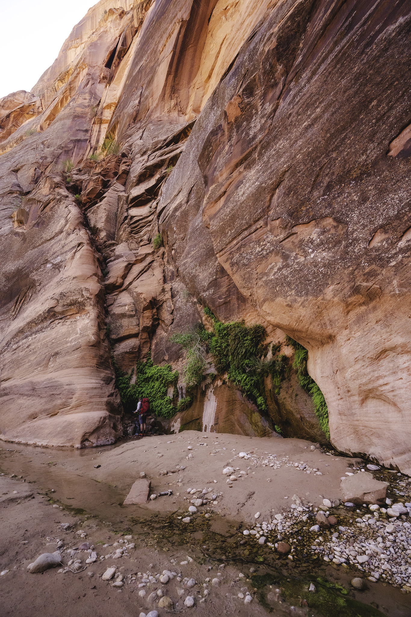 big springs paria canyon