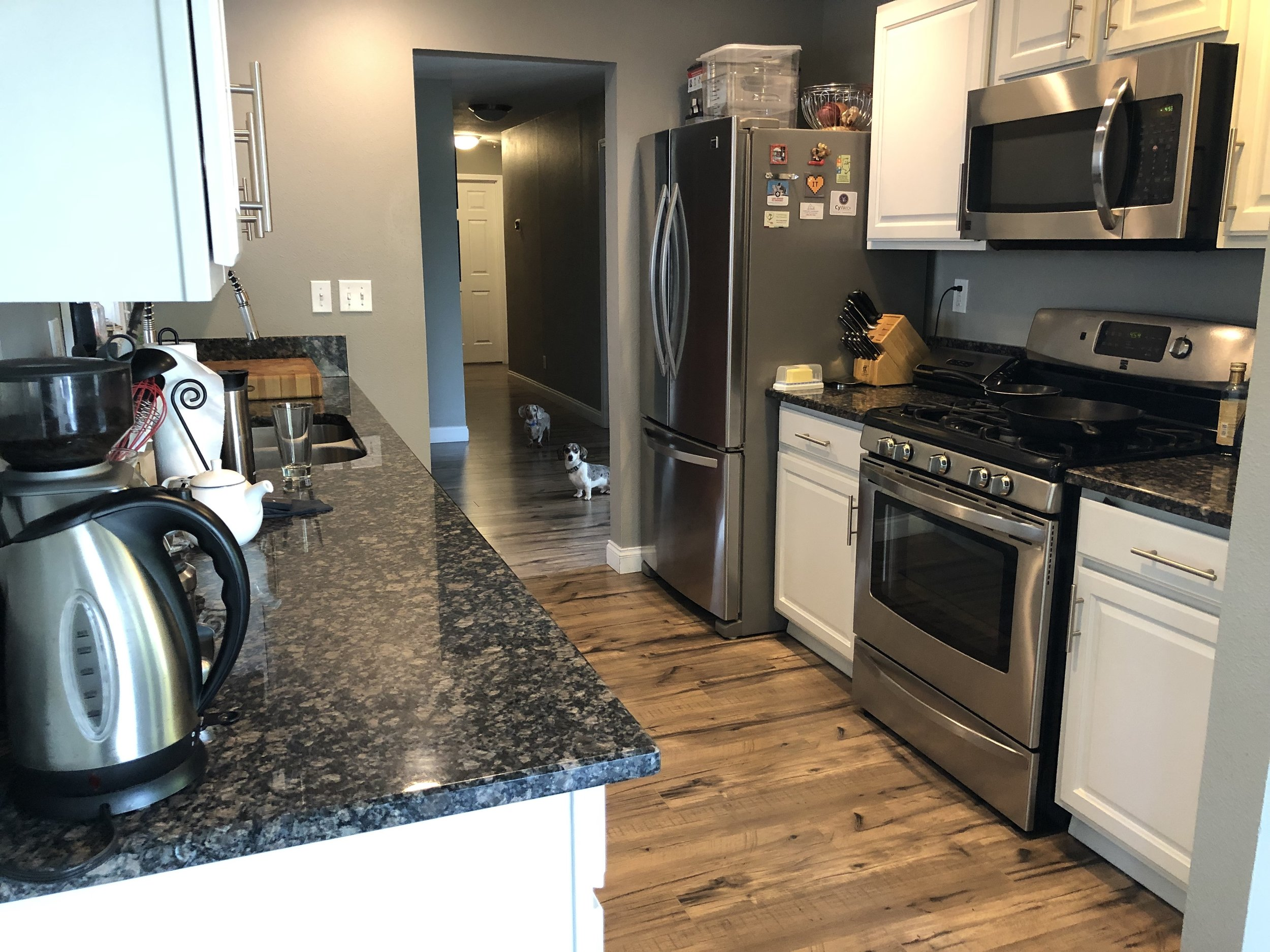 All good home photos have background dogs. This is my kitchen; I just took a quick photo today. Please ignore the cluttered countertops.
