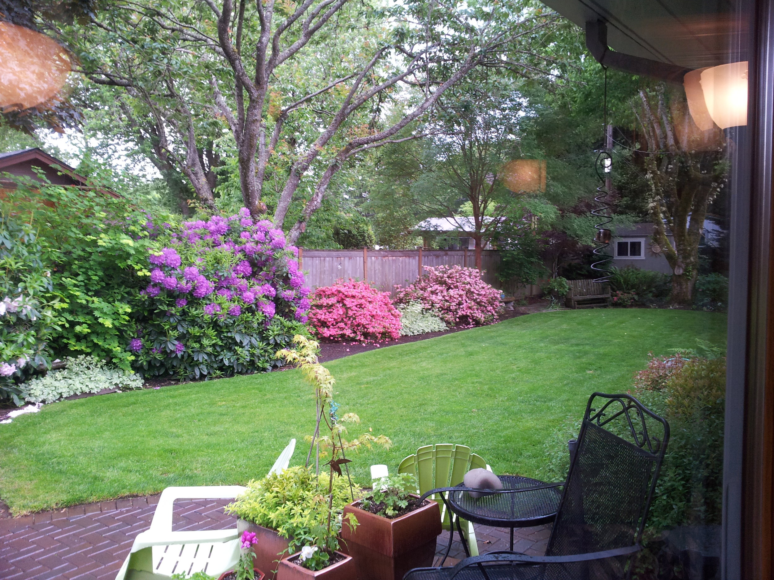 The interior was very dated but with a backyard like this, who cares???
