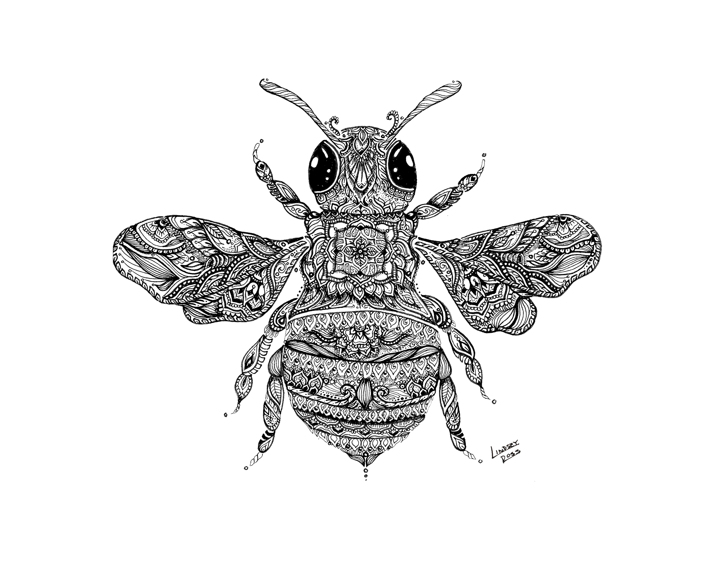 11 x 14 Bee.png