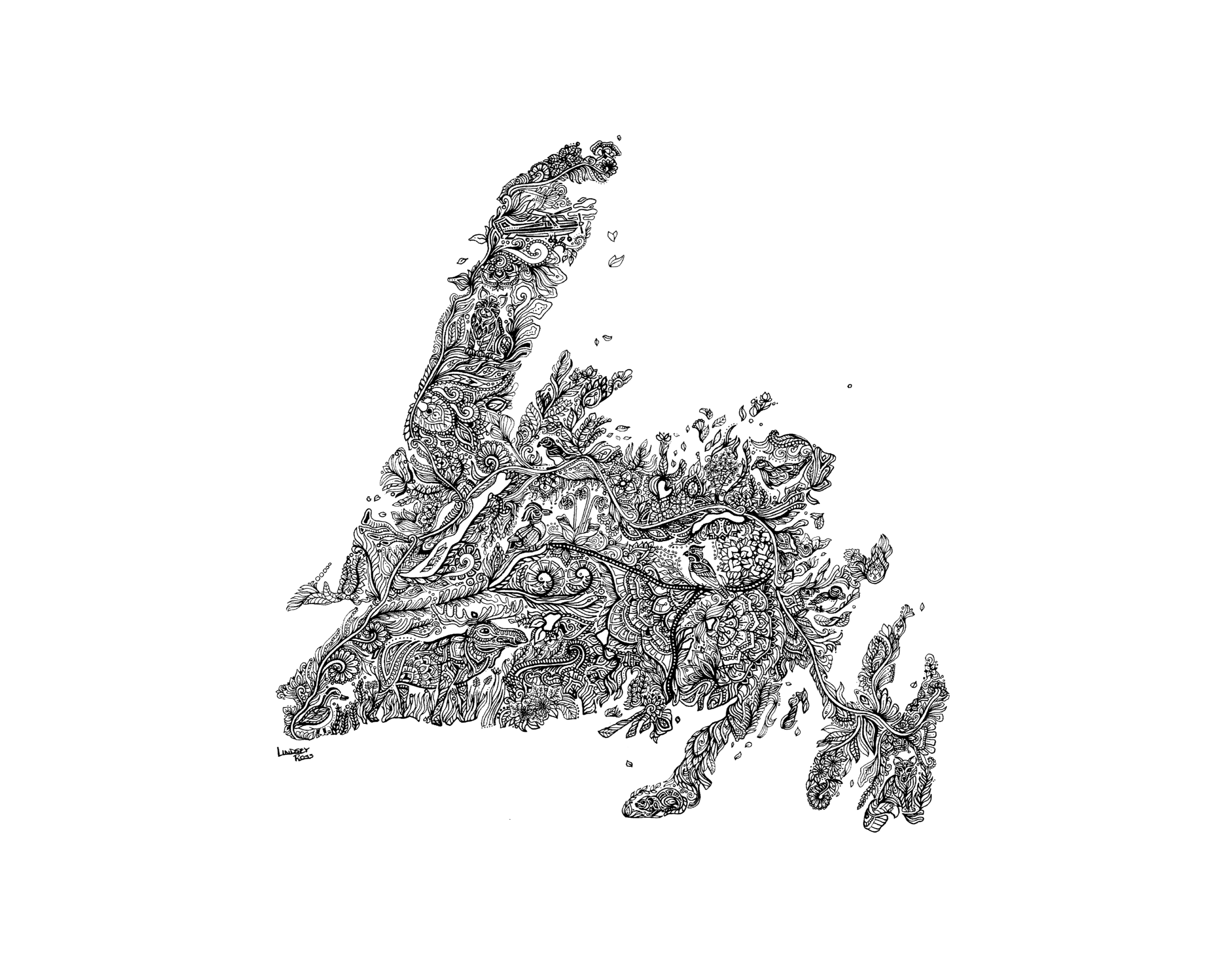 NFLD-11 X 14.png
