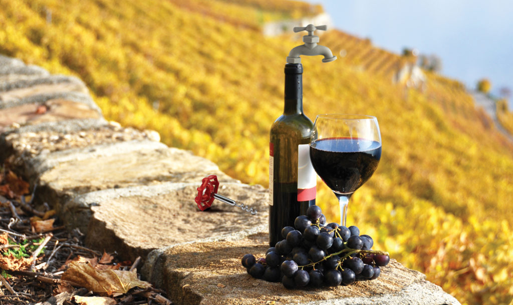 Vineyard-Wine-Tools_Lifestyle-1-1024x610.jpg