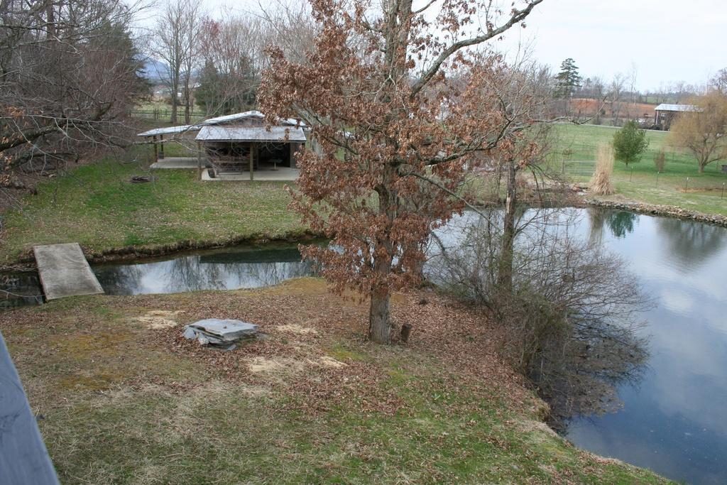 Spring & Pond.jpg