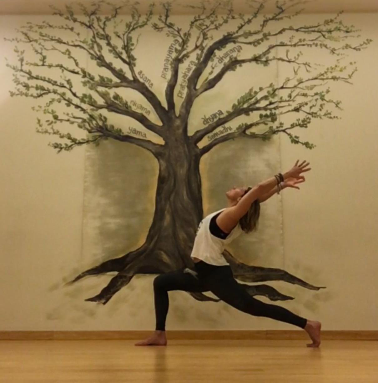 anjaneyasana Kula tree.jpg