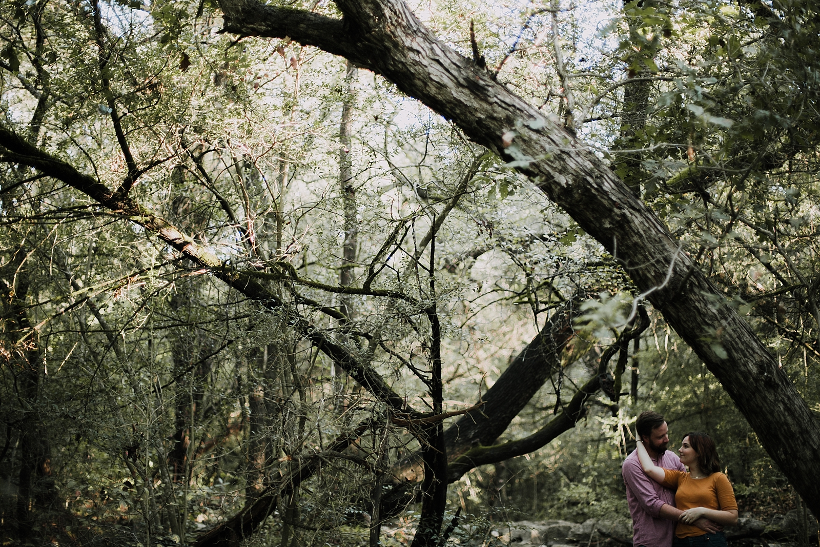 couple in the woods, green belt engagements, austin texas engagement, austin texas wedding photographer, austin green belt engagements