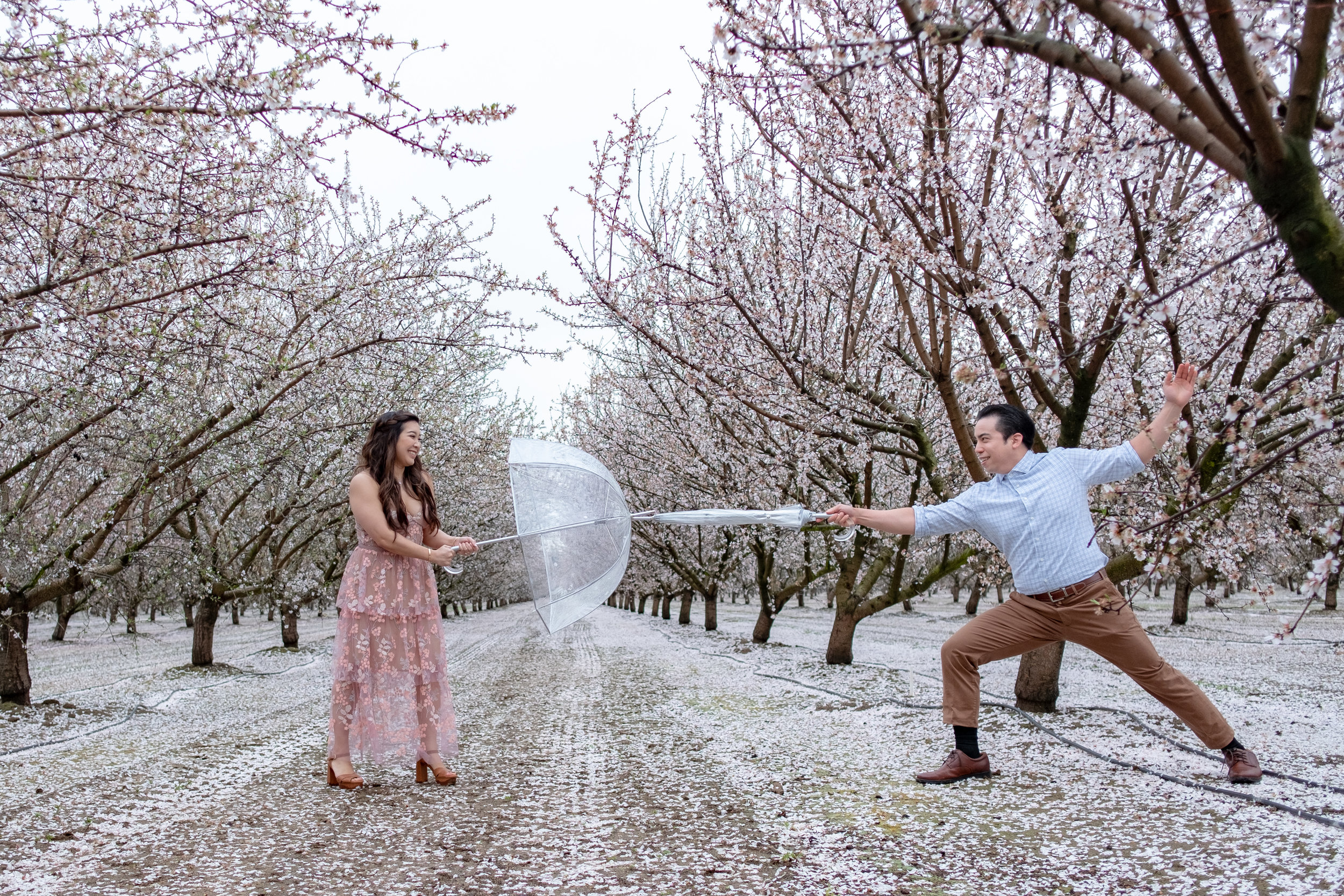 20190302 - Almond Farm Engagement - 0308.JPG