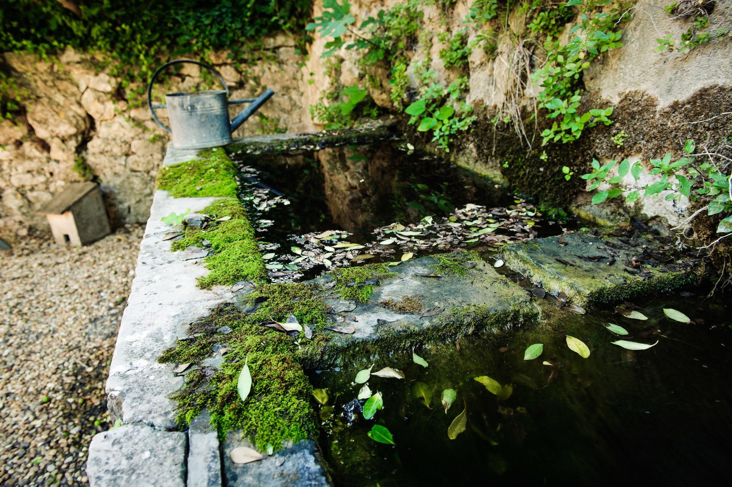 jardinjardin_ONE2083.jpg
