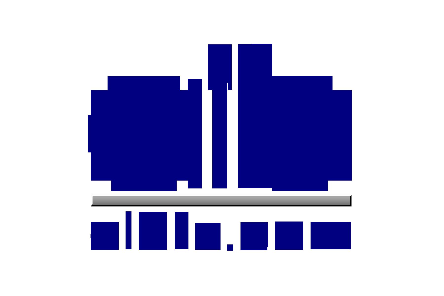 AIB-2011logo_300.png