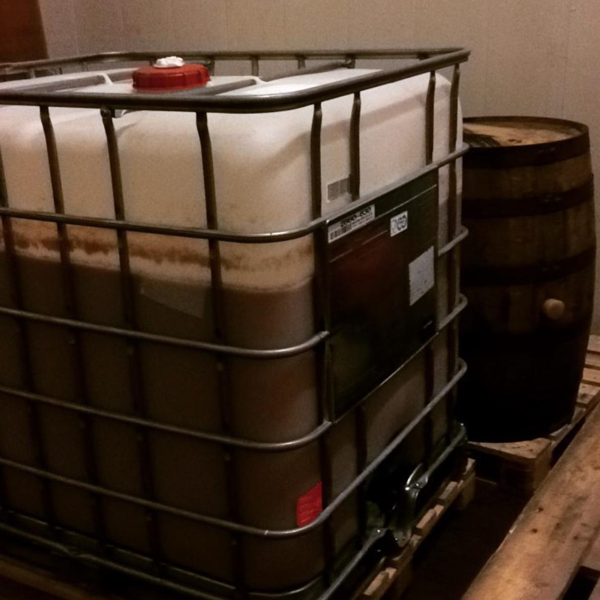 6 - Alcoholic fermentation