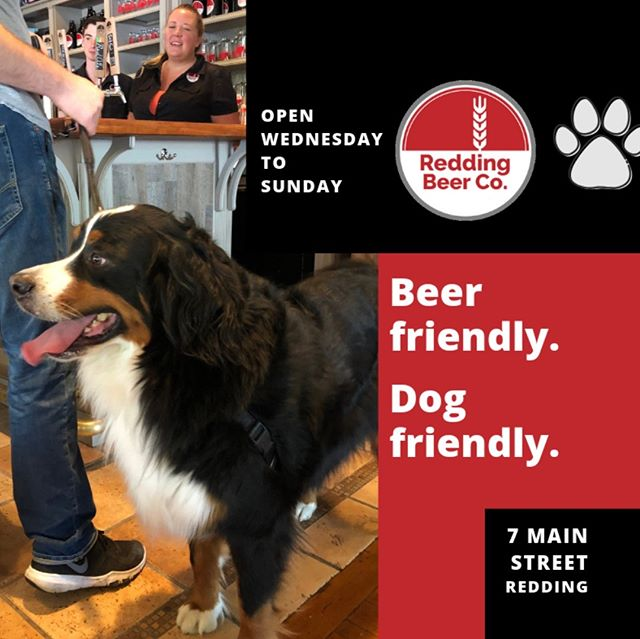 Yes, we're an artisan microbrewery, but did you know we're a dog friendly artisan microbrewery? 🐾 Yup! Leashed, well-behaved dogs are always welcome at RBC, so if you're out with your dog(s) - stop by! Road tripping through the area and want to relax, stretch your legs - stop by! Don't have a dog but want to see other dogs - stop by! 🍺  Sunday 2-7PM Wed-Thu-Fri 5-10PM Saturday 2-10PM  #dogfriendly #dogtravel #craftbeer #doglovers #beerlovers #reddingdrinks #dogsofct #connecticutdogs #ridgefieldct #ridgefield #dogsofridgefield #georgetown #dogsofnewengland #wilton #drinklocal #ctbeertrail #ctbeer #ctbeerdrinkers #redding #bernersofinstagram #farmersmarket #berners #georgetownfarmersmarket