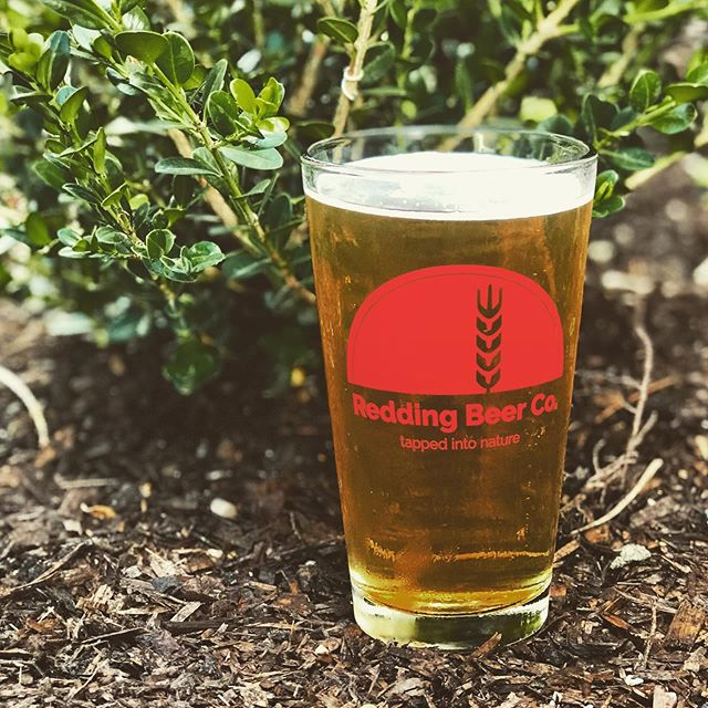 Today's crazy weather pairs well with our Czech Pilsner. Steffi and Allison pouring till 7! . . . #reddingbeerco #craftbeer #pilsner #sundayfunday #summer2k19 #connecticutbeertrail #flights #pints #reddingct #westonct #wiltonct #freshbeer