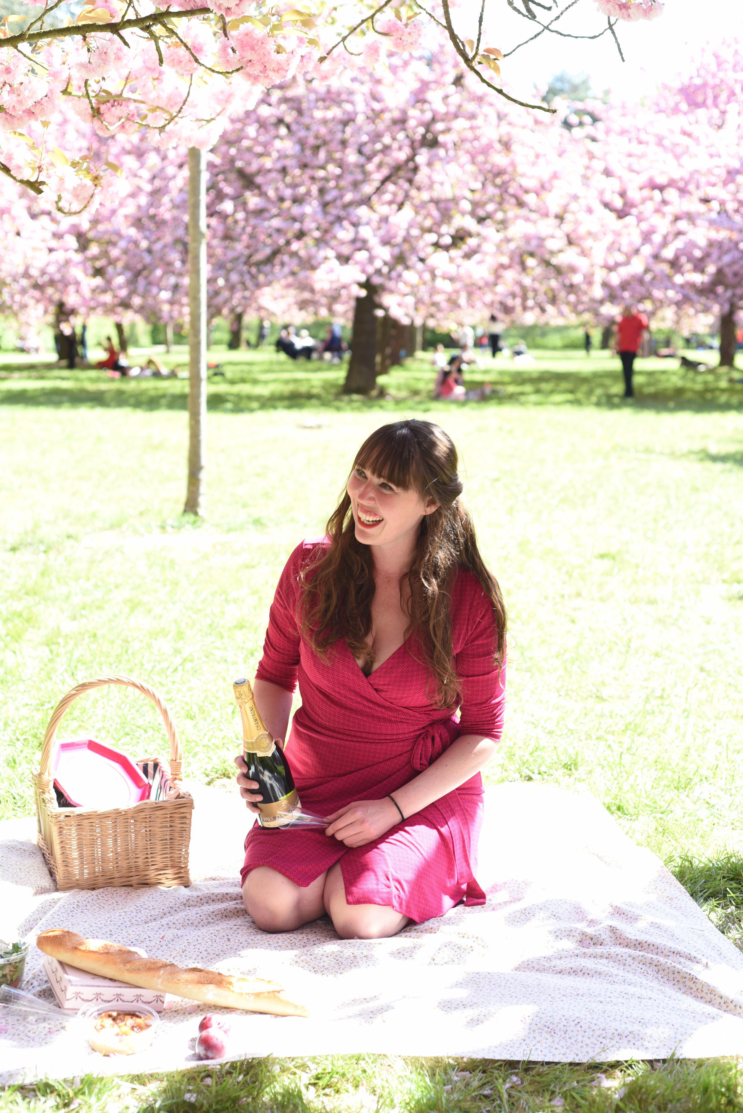 cherry blossoms paris-9.jpg