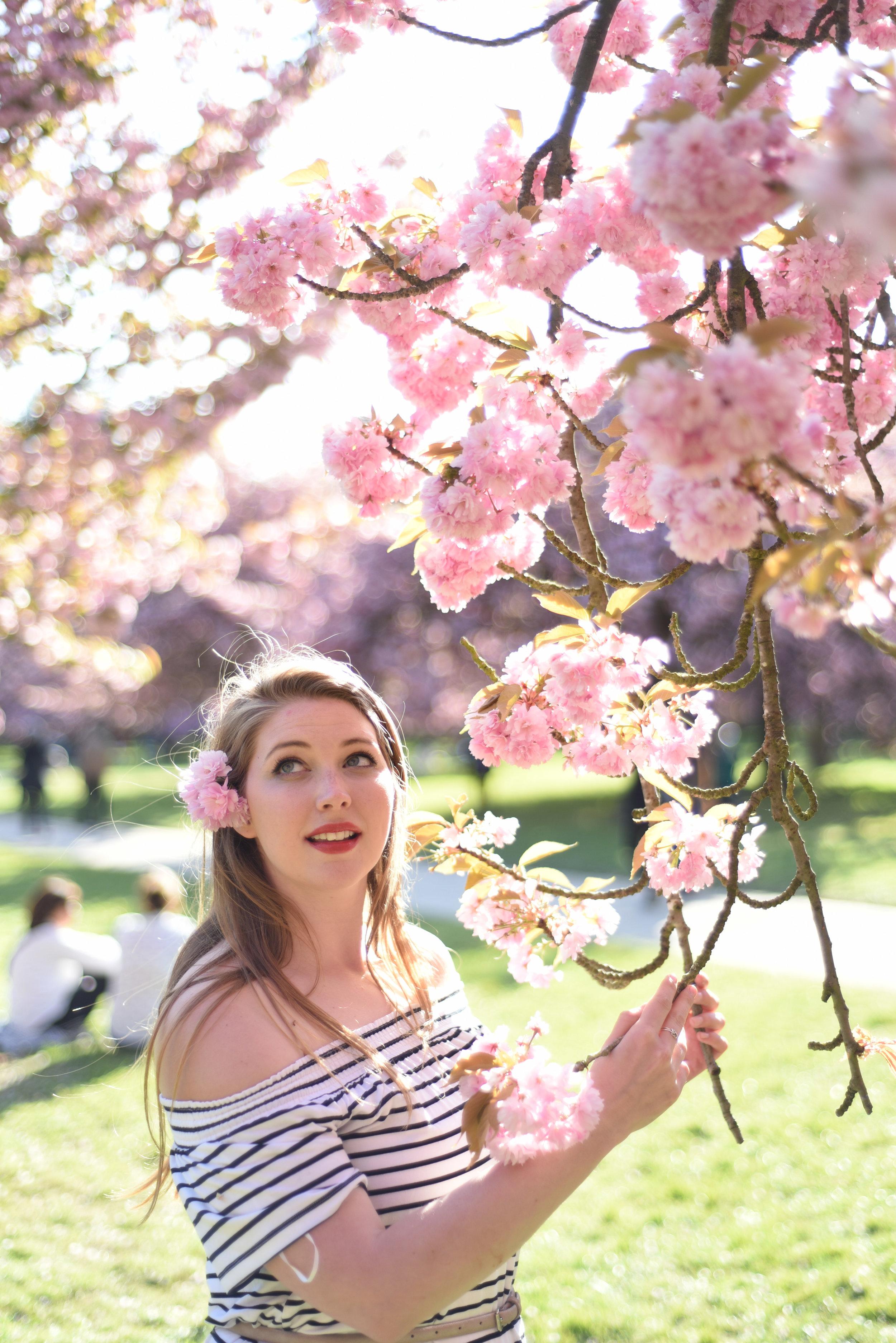 cherry blossoms paris-23.jpg