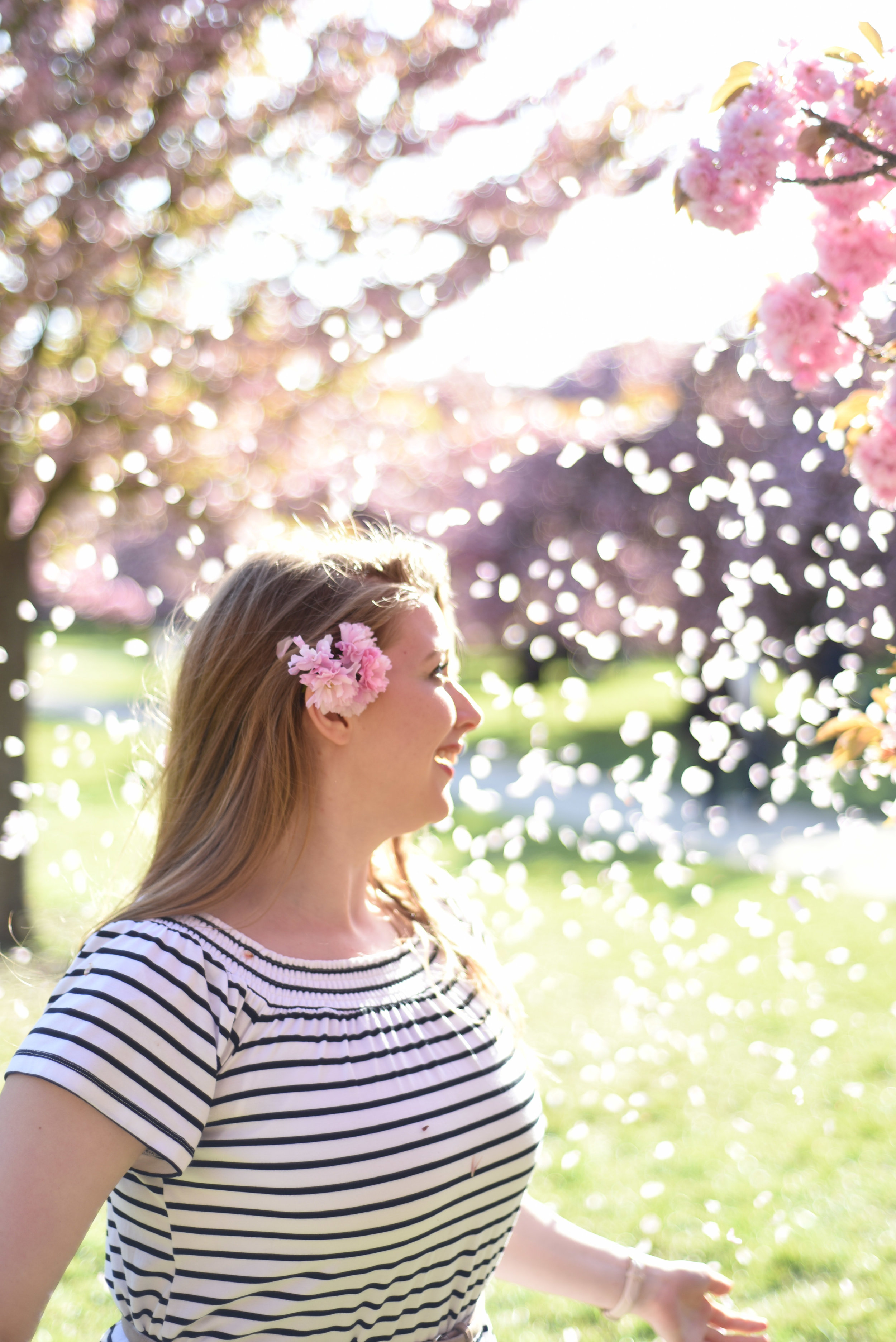 cherry blossoms paris-22.jpg