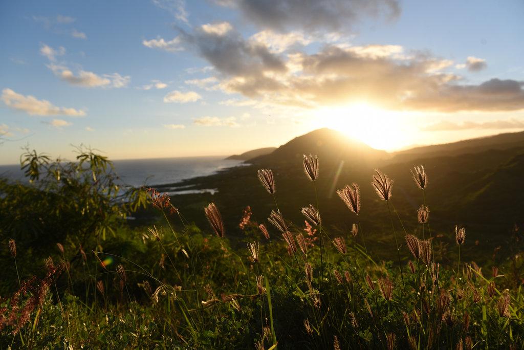 Hawaii2018-2197.jpg