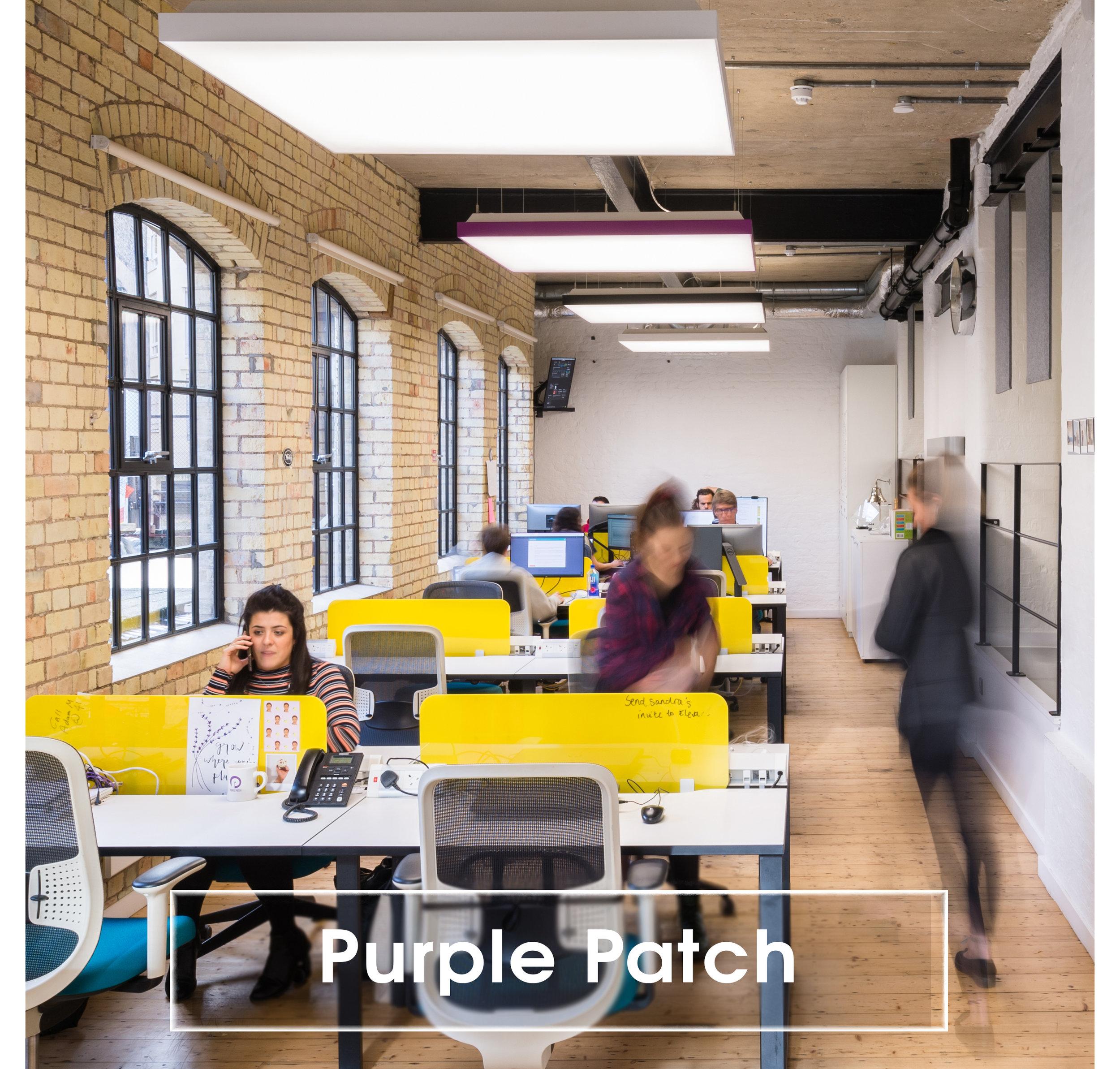 Purple Patch v2.jpg