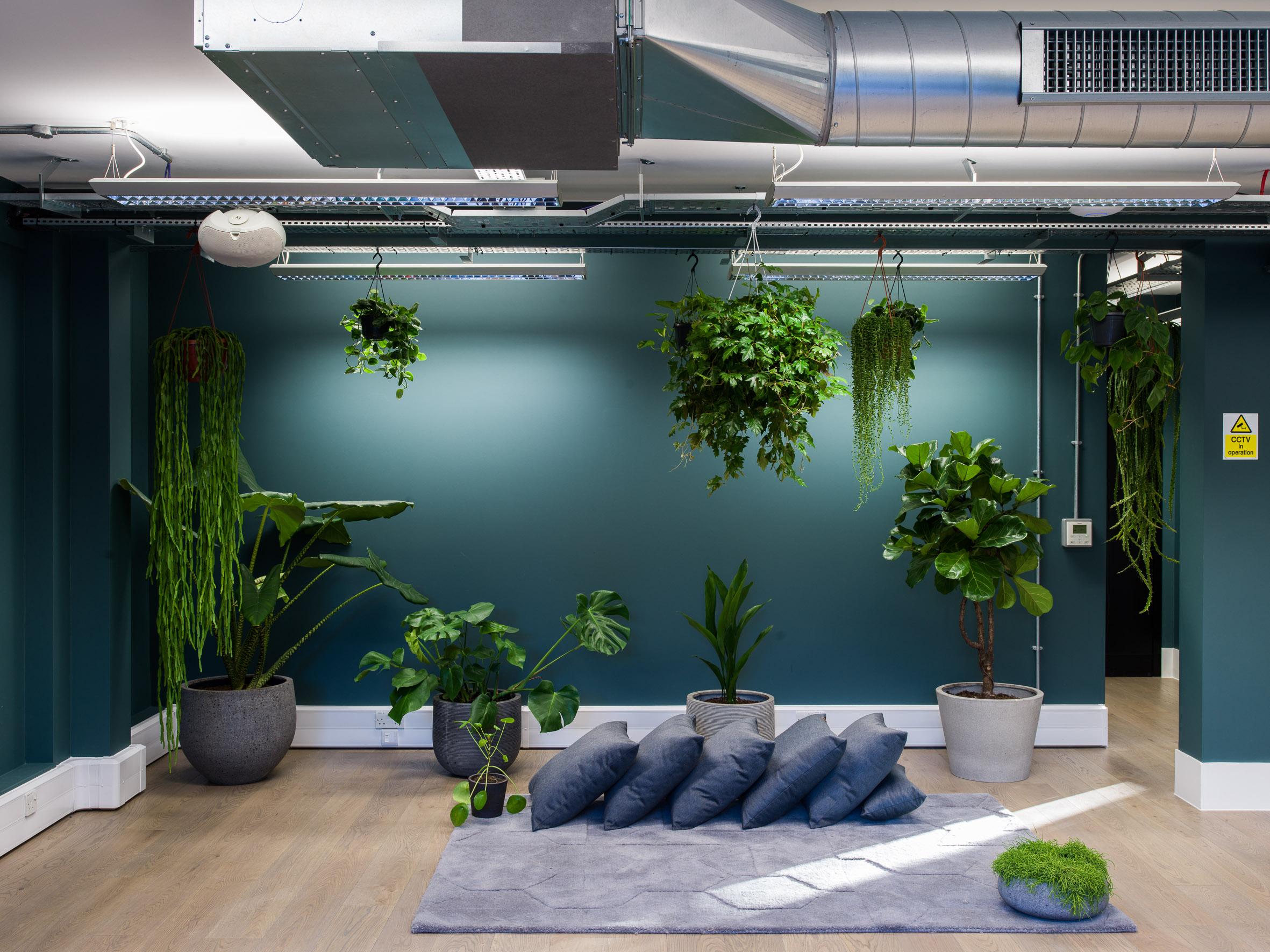 Fulham Zen Studio.jpg