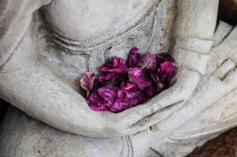 Meditation Teacher vs Meditation Master