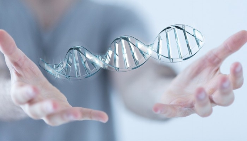 Epigenetics and meditation