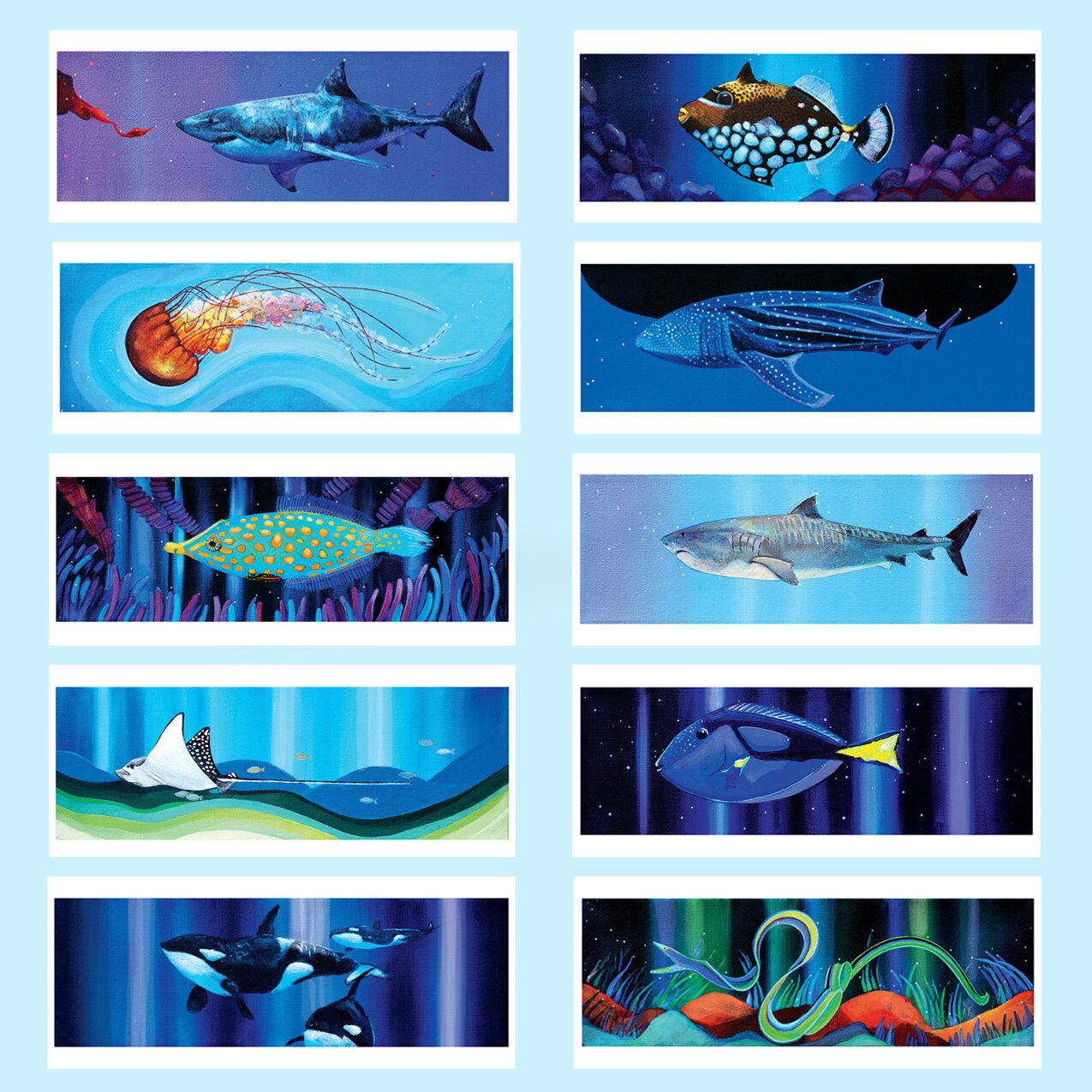 Meehan_Jessie_Sea Life Series.jpg