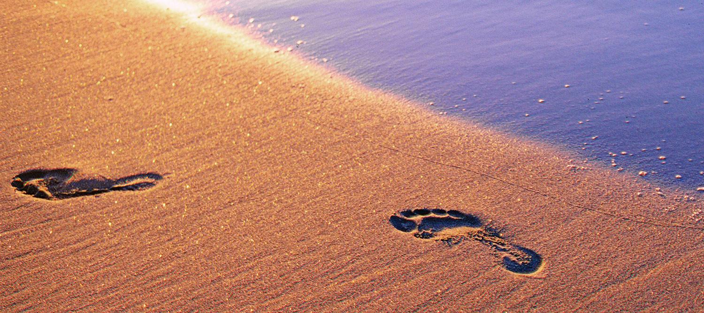 footsteps-in-sand-teaser.jpg