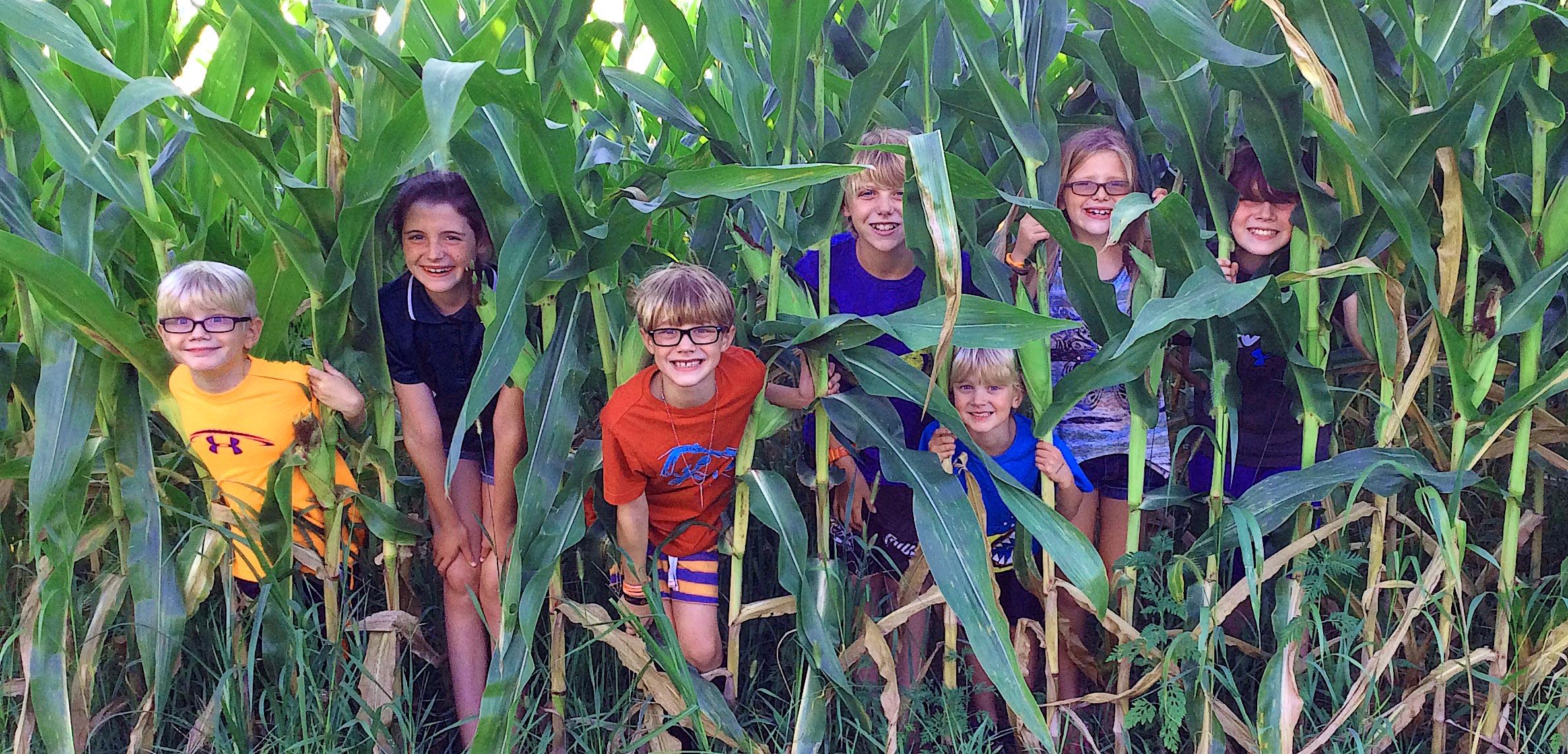 The Tribe of Grandchildren