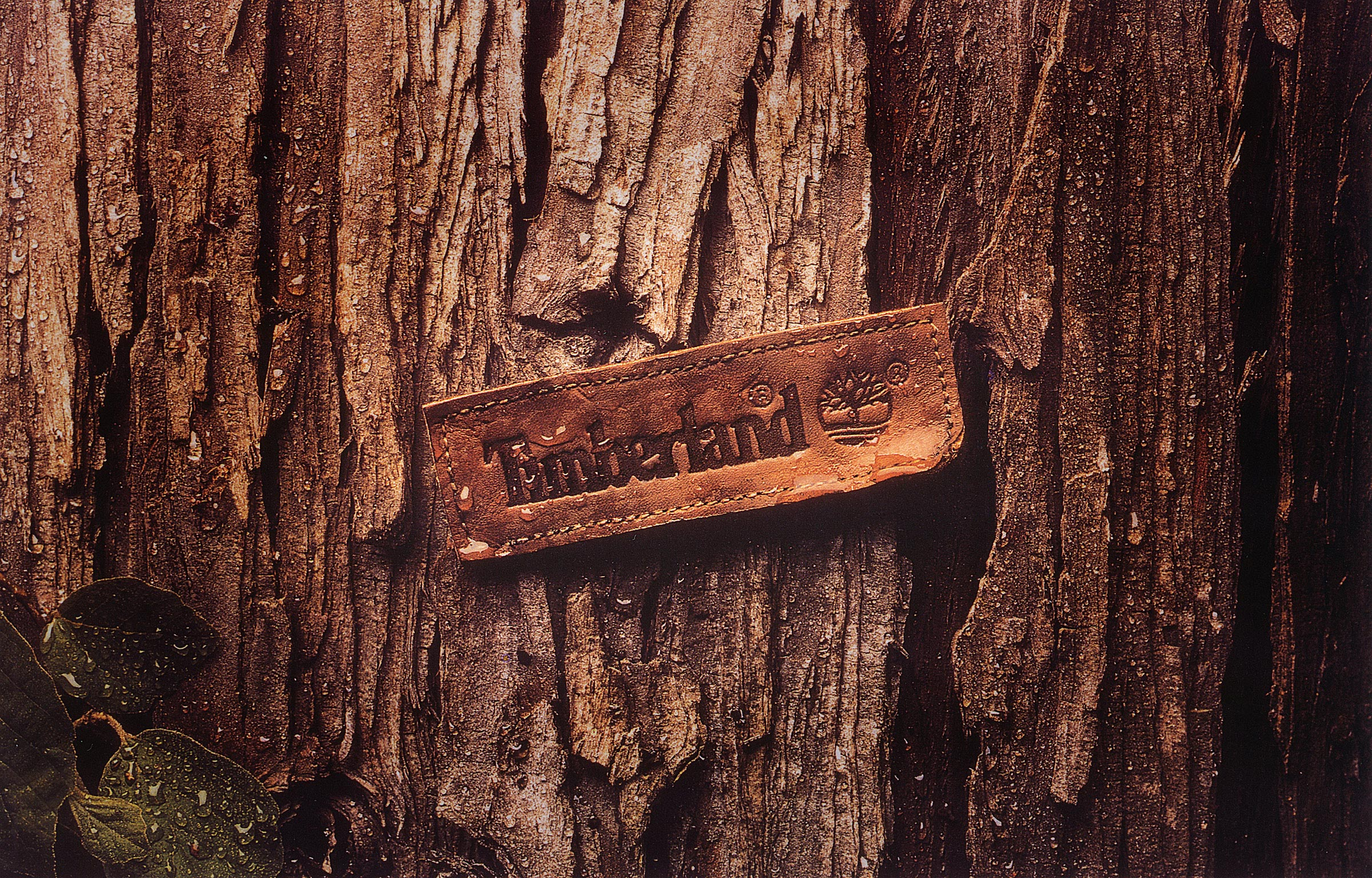 Timberland  Label    Mullen Advertising  Anne Maloof & Margaret McGovern • creative _________________________________________________________