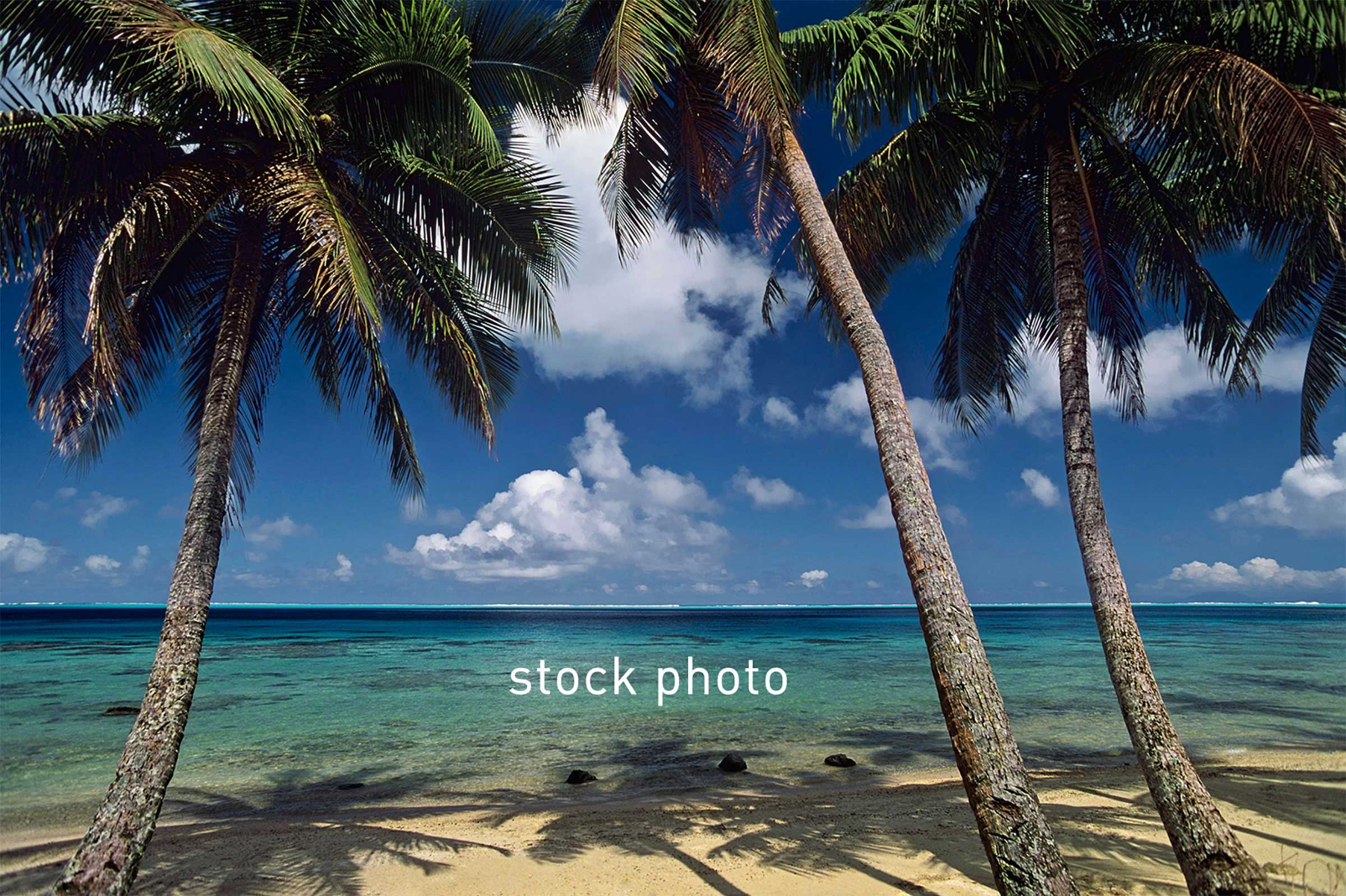 celebrity-caribbean-stock.jpg