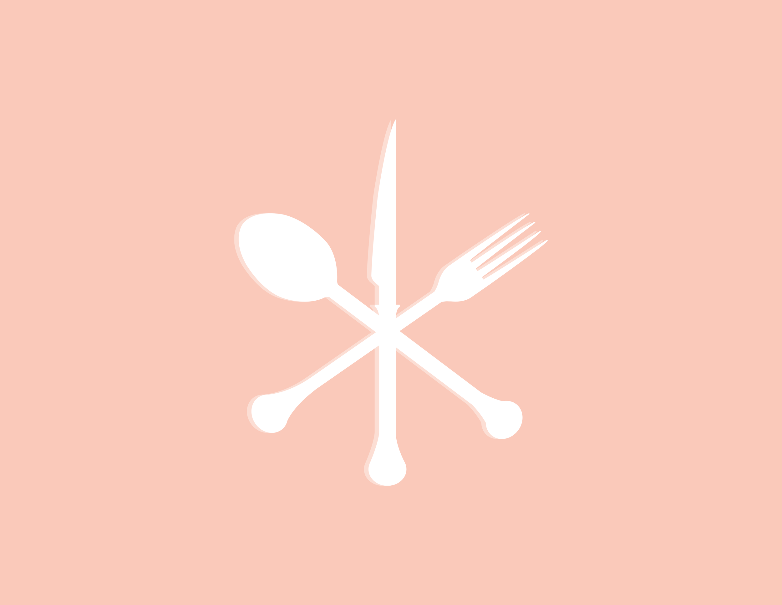Thermo Foodie and the Chef Cutlery - Kira Hyde