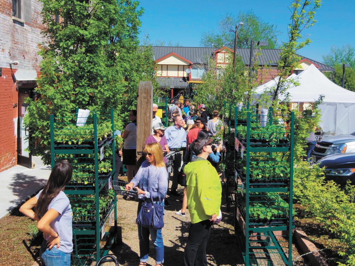 Denver Urban Gardens' annual plant sale in 2017. (Credit: Denver Urban Gardens)