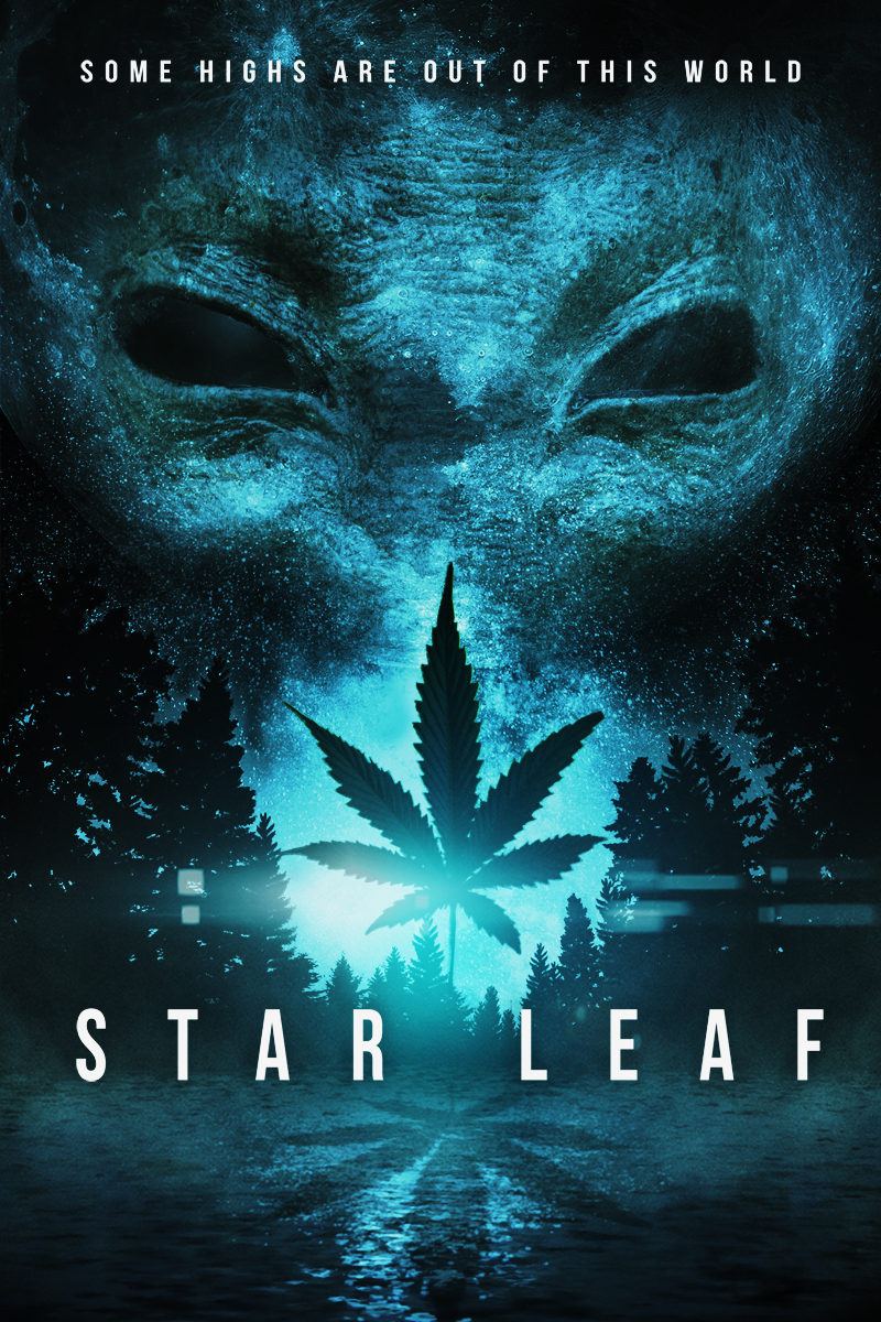 starleaf1.jpg