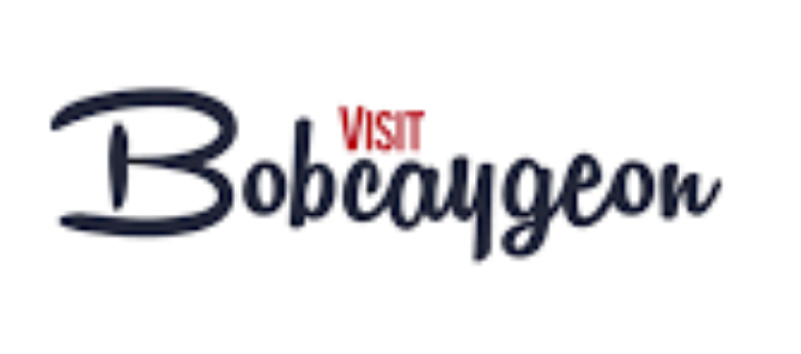 Bob Temp Logo.png