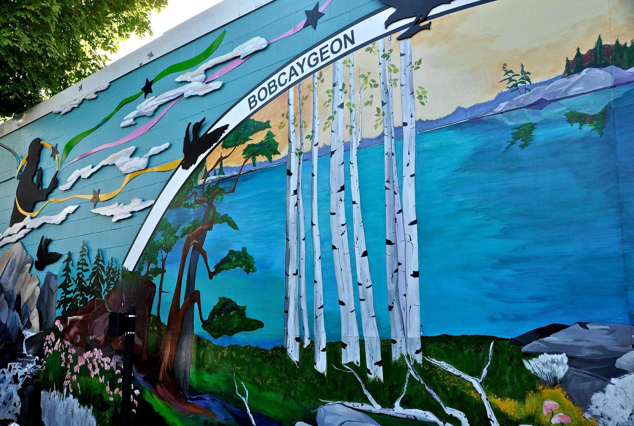 cib house 2018 mural.jpg