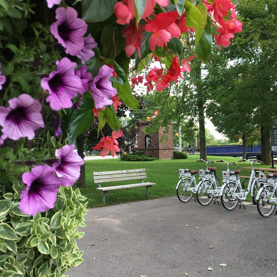 cib house bridge bikes florals.jpg