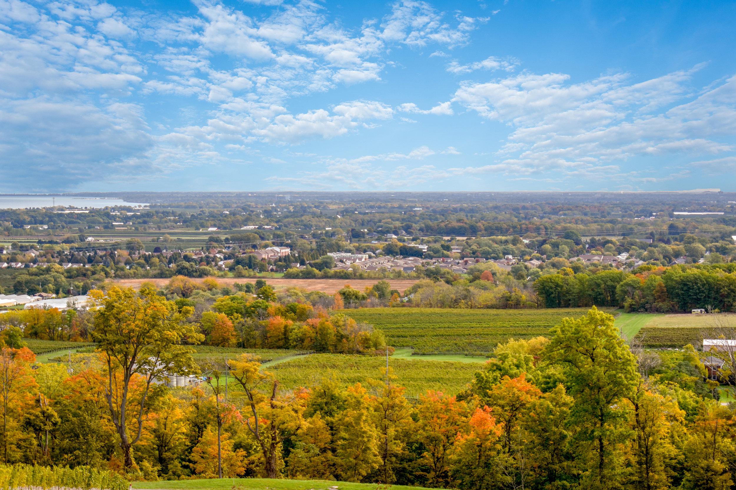 Lincoln View-LZ.jpg