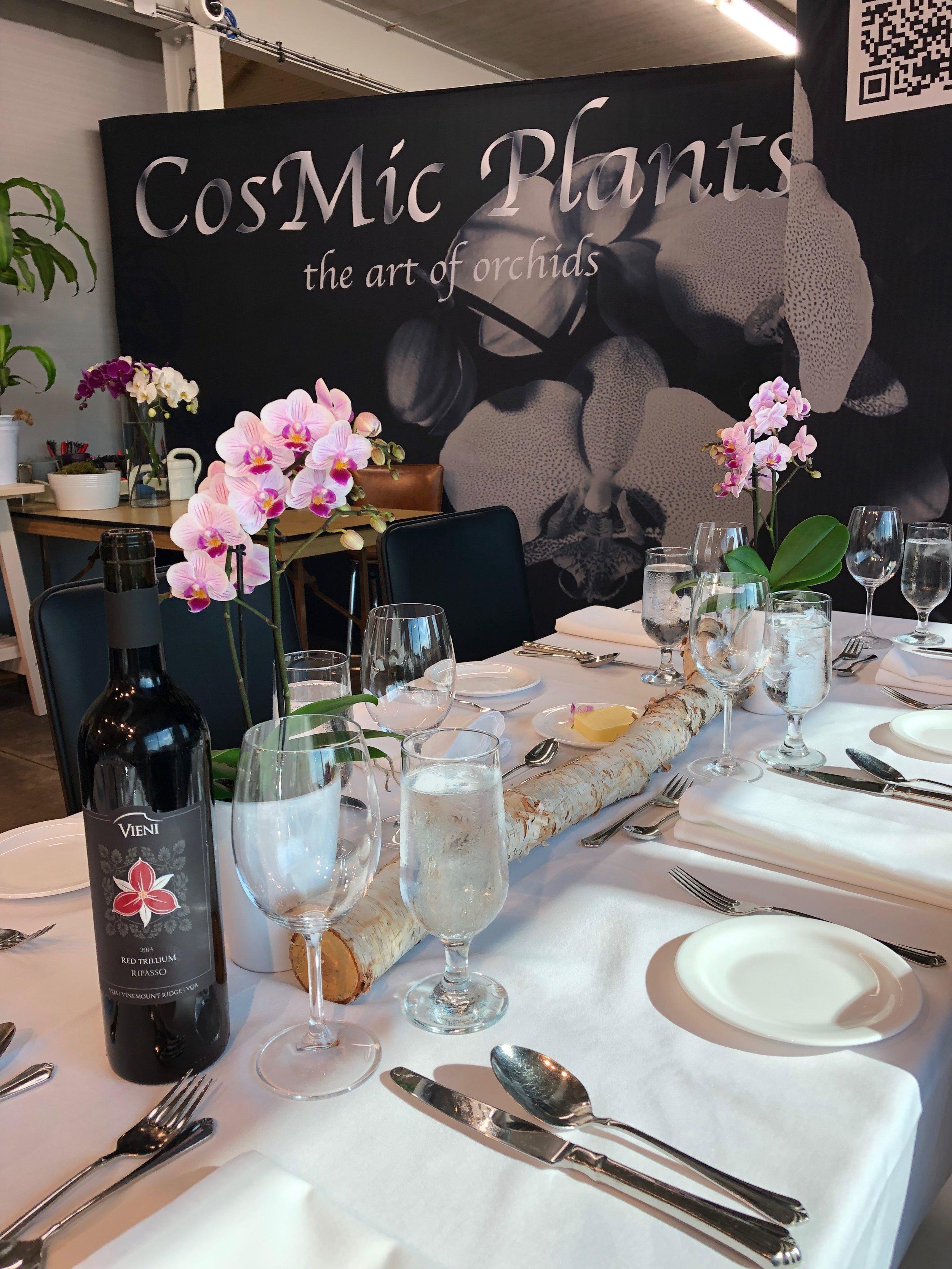 CosMic Dinner 6.jpeg
