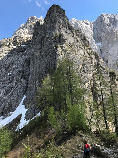 Kranjska Gora Hike