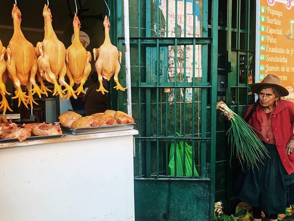Birds for sale in Huaraz