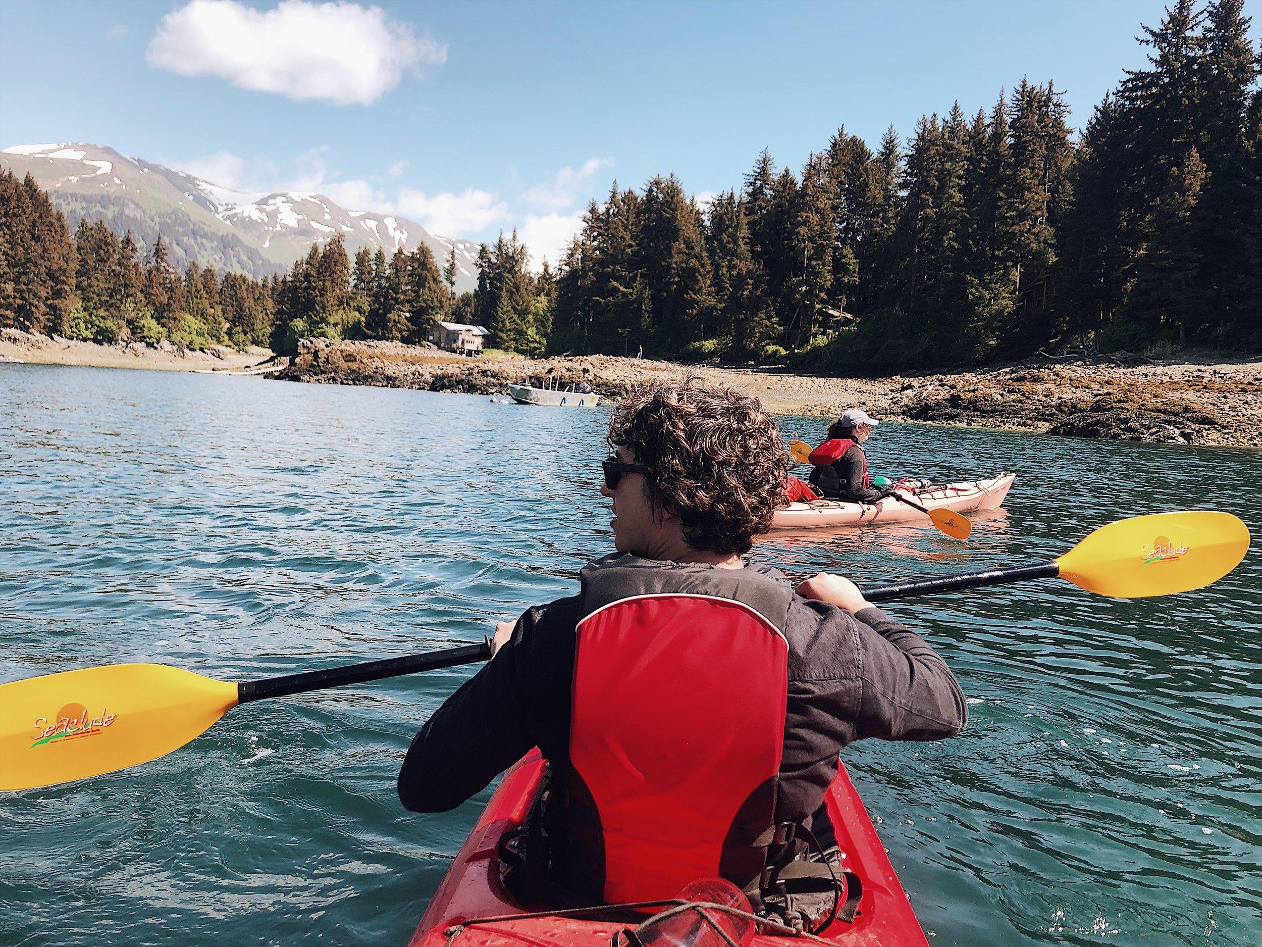 tutka bay lodge sea kayaking kenai alaska